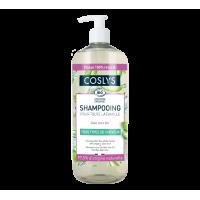 Shampooing pour toute la famille