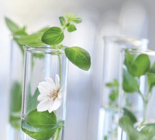 Expertise scientifique et industrielle - Coslys
